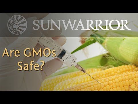 what-are-gmos?-|-genetically-modified-foods-and-your-health-|-sunwarrior