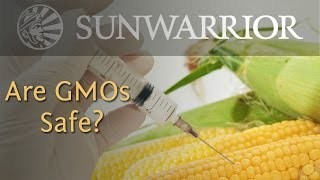 What are GMOs? | Genetically Modified Foods and Your Health | Sunwarrior