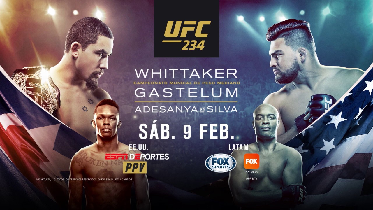 Image result for UFC 234: Whittaker vs. Gastelum is Ultimate Fighting Championship