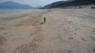 砂浜にて.