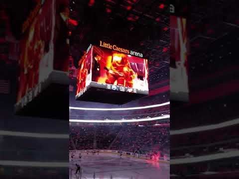 Detroit Red Wings vs Edmonton Oilers 11/3/18