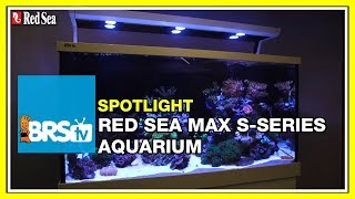 How to setup a complete reef system - Red Sea Max S Aquariums | BRStv Spotlight