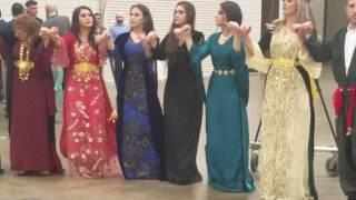 Gambar cover Kurdish wedding.singer dilbirin Akreyi