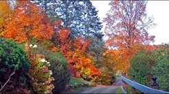The Laurentians in Autumn, SAINT-SAUVEUR, Quebec, Canada