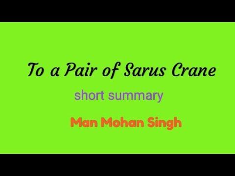 SSLC  To a Pair of Sarus Cranes short summary