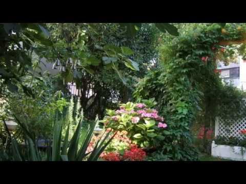 Carmen durán: freundliche vision op. 48, 1 (r. strauss - o. bierbaum) / miguel costas, piano mp3
