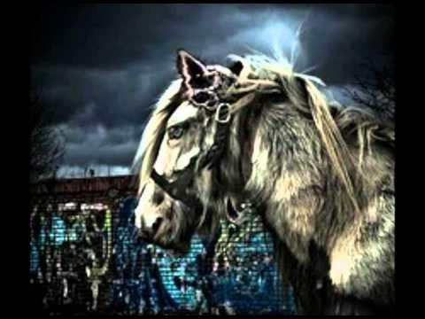Gogol Bordello - Punk Rock Parranda mp3