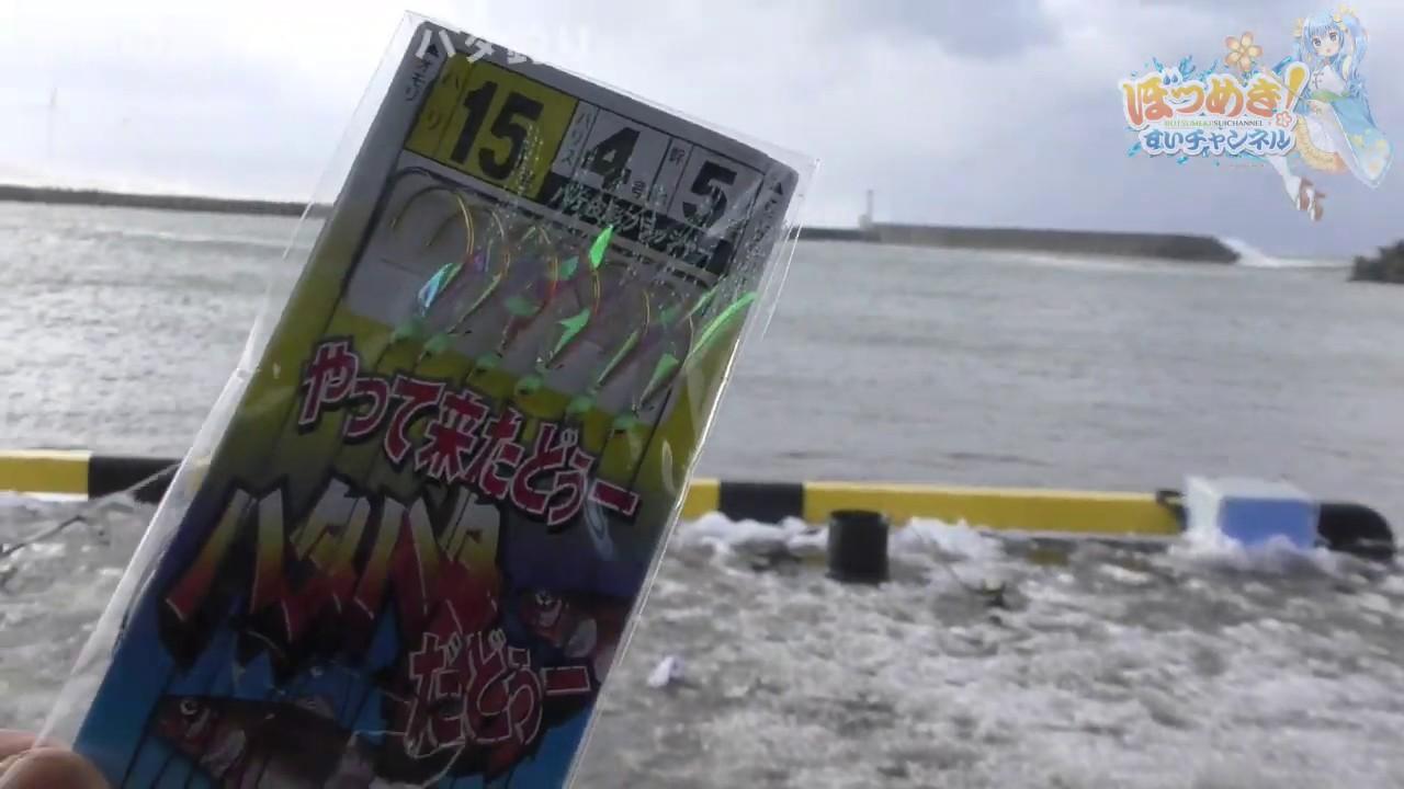 秋田 ハタハタ 釣り 情報