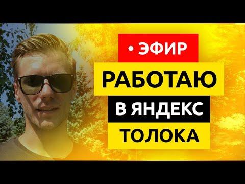 🔴 Работаю в Яндекс Толока в Прямом Эфире