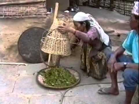 Storing  vegetables in a Himalayan village - 1993