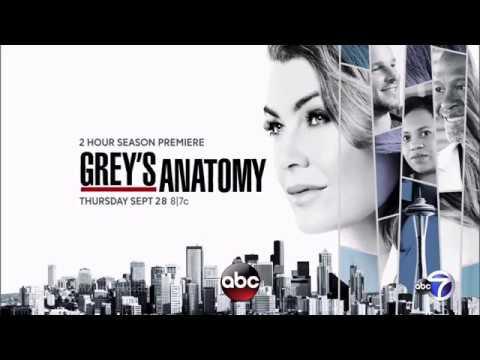 Greys Anatomy Staffel 14 Spoiler