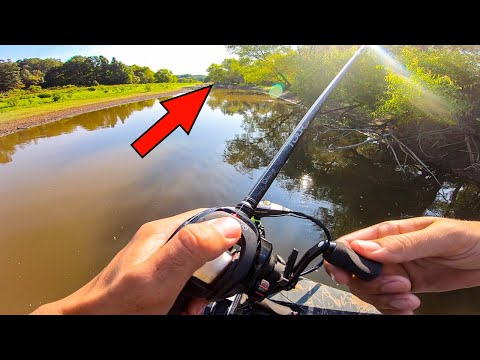 CATCHING GIANT BASS In A MUDDY Creek! ( Bass Fishing Tournament On Smith Lake)
