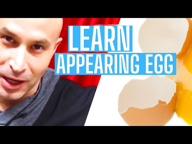 How To Suckers egg-explained