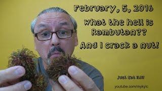 Rambutan and a nut crack!!!!!