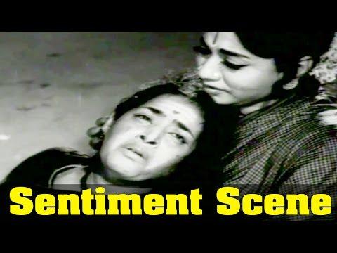 Nathayil Muthu Movie : Varalakshmi, And K.R. Vijaya, Best Sentiment Scene