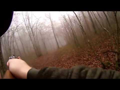 Diviak utočí - Wild board attack