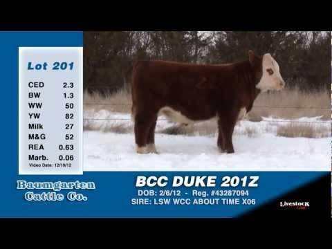 LOT 201 - BCC DUKE 201Z
