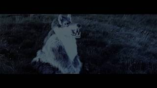 Hunted Book Trailer