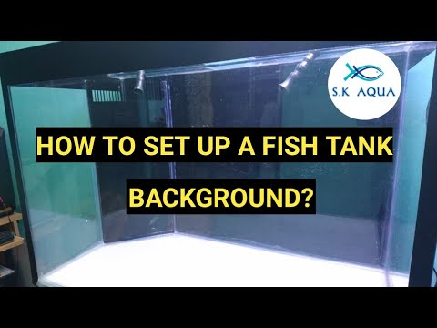 How To Set Up A Fish Tank Background. [TAMIL]