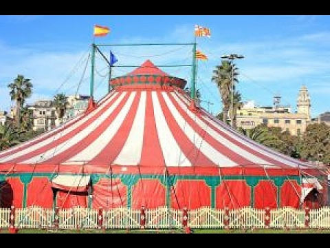 Best Circus on the Planet
