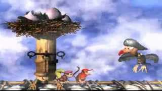Donkey Kong Country 2 Diddy
