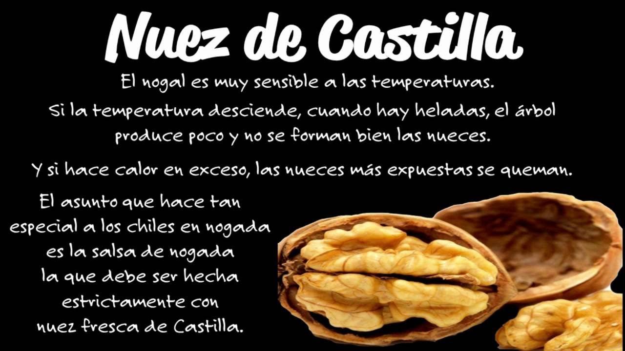 Nuez De Castilla Youtube