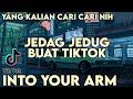 Dj Tiktok Viral Terbaru  Into Your Arm Fvnky Slow Full Bass Dj Komang Rimex  Mp3 - Mp4 Download