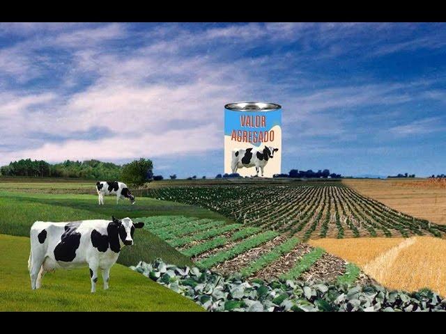 Cadena de Valor Agroindustrial Argentina - YouTube