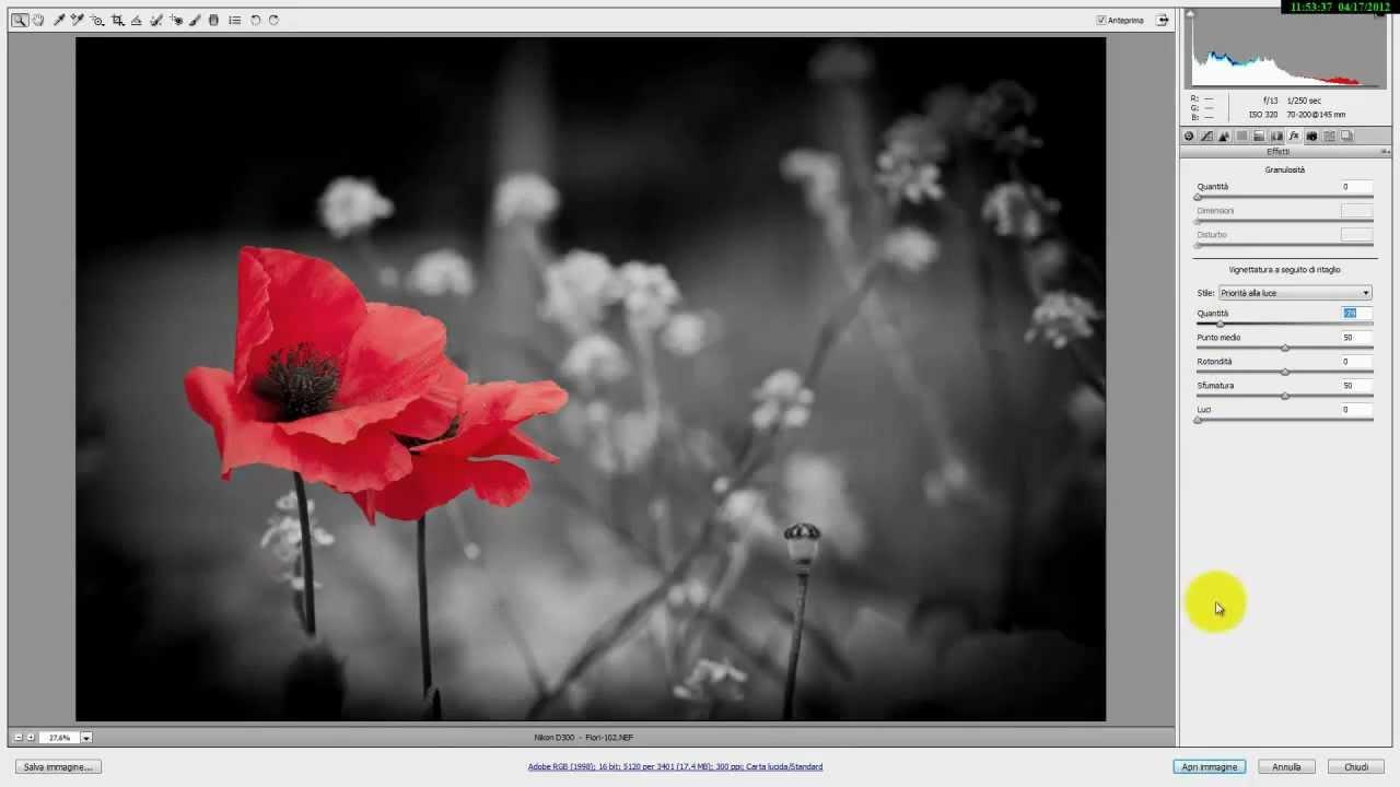 Photoshop bianco e nero parziale effetto splash facile - Pagine a colori in bianco e nero ...