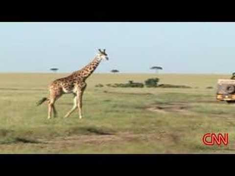 Inside Africa - Tourism Part 1