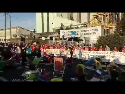 Cientos de personas exigen en Pontevedra que se derogue la prórroga a Ence