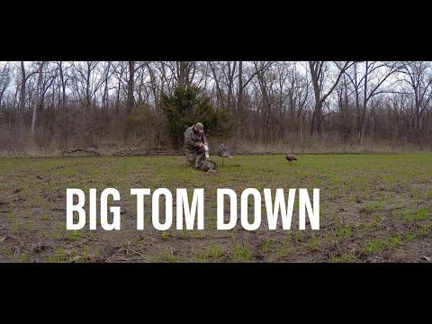 Iowa Turkey Hunting 2019- 30 Minute Tag Out