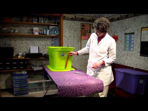How to make the best litter box using a storage bin