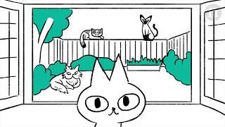 Одомашнивание кошек: с полей - на диваны