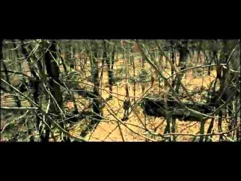 Shelter Deutsch Film