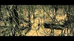 SHELTER Trailer deutsch - Ab 3.Dezember 2010 auf DVD und BluRay