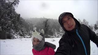 Nieve en Neltume