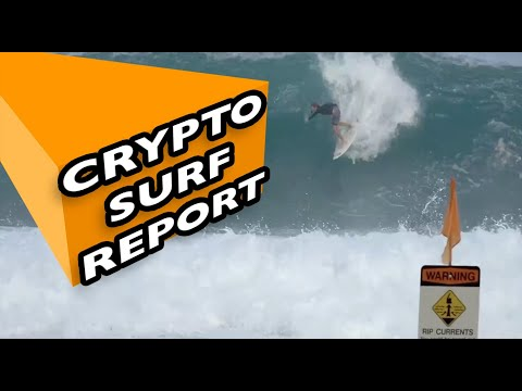"Crypto Surf Report Nov 6, 2020 – Steppenwolf ""Born To Be Wild"" acoustic cover"