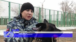 Астраханский Аль Капоне ведёт борьбу с русской мафией