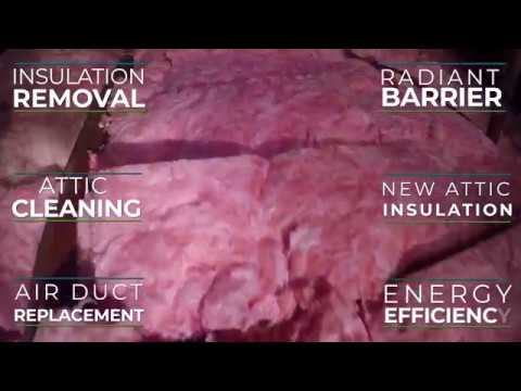 Insulation Removal in a Tight Attic by Local 5 Star Insulation Contractor - Attic Guys