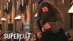 Harry Potter - Best of Hagrid