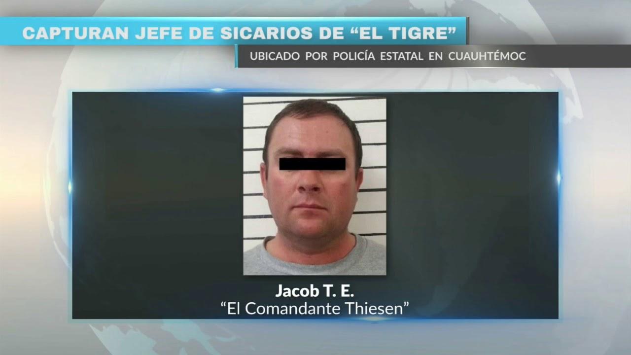 Download Capturan jefe de sicarios de El Tigre