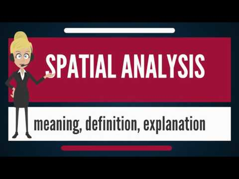 What is SPATIAL ANALYSIS? What does SPATIAL ANALYSIS mean? SPATIAL ANALYSIS meaning & explanation