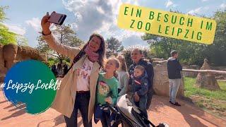 #LeipzigLockt: Ab in den Zoo Leipzig!