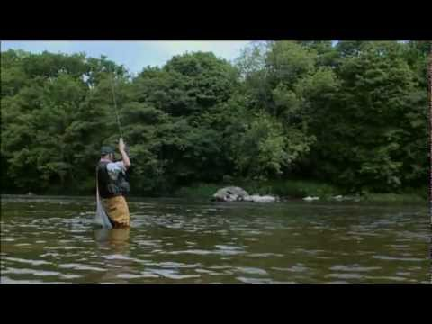 Born to Fish Fly fishing River Wye