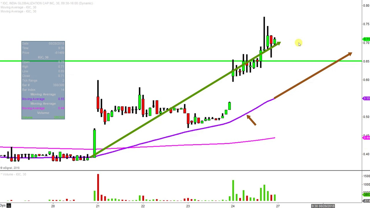 India globalization capital inc igc stock chart technical