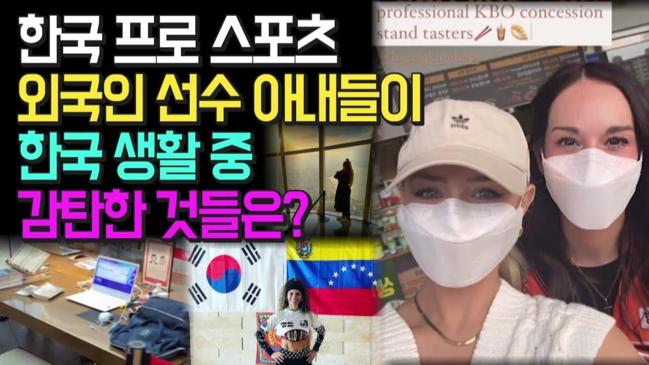 한국 프로 스포츠 외국인 선수 아내들이 한국 생활 중 감탄한 것들은?