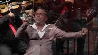 Arik Davidov in Concert  // אריק דוידוב- קונצרט