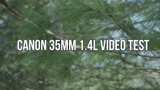 Canon 35mm 1.4L Lens Video Test | SoleilTech