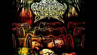 "Misanthropic Inoculation ""Murder in thy Name "" 2012"